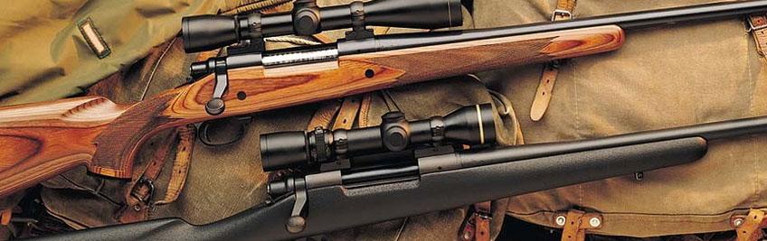Aquí puedes comprar un rifle