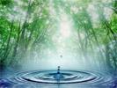 Agua Outdoor